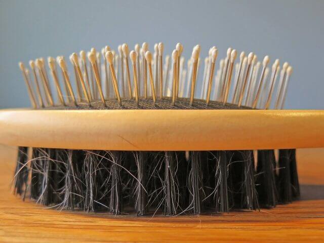 Fragment Zussenleed - haarborstel